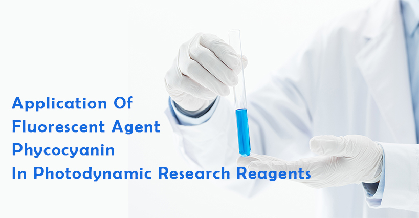 Application Of Fluorescent Agent Phycocyanin In Photodynamic Research Reagents
